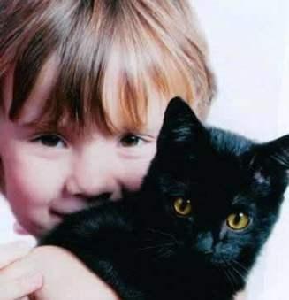 Фото - Предостерегаем ребенка от животного мира